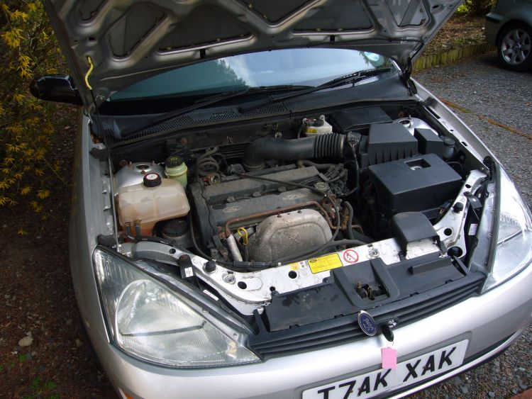 Car Engine Cooling Down