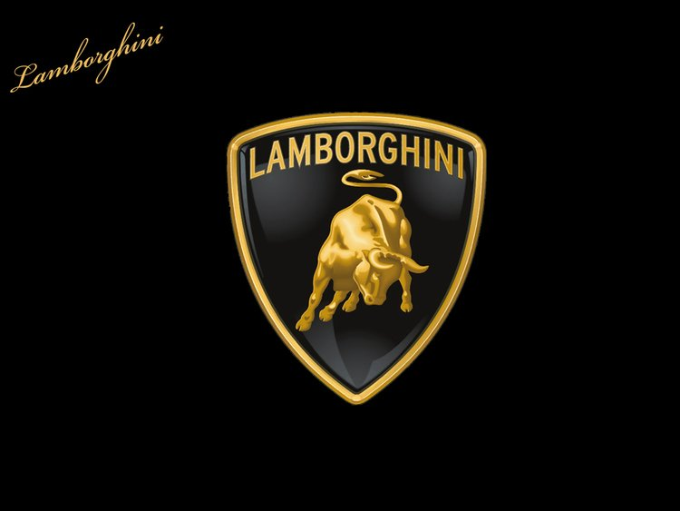 Information on Lamborghinis